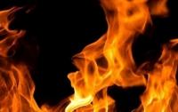 Два малолетних ребенка погибли на пожаре в Киевской области