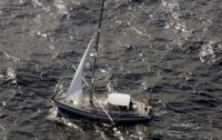 Британская яхта утонула после столкновения с китом