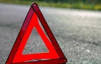 В Мелитополе жестко наказали виновника пьяного ДТП