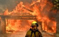 Лесной пожар в Калифорнии уничтожил около тысячи домов, есть жертвы