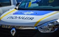 Под Киевом мужчина избил палкой полицейских