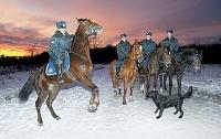 Конная милиция охраняет елки в Днепропетровской области