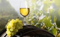 Археологи обнаружили в Грузии древнейшее виноградное вино