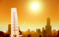 Ученые предсказывают сильнейшую жару на Земле в ближайшие 80 лет