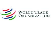 Новым главой ВТО стал Роберто Азведо