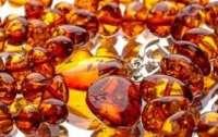 Власть Житомирщины утверждает, что незаконная добыча янтаря прекращена
