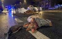 Протесты в Польше: под домом Качиньского оставили мертвую свинью