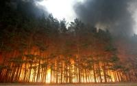 Жители российского города пожаловались, что не видят солнца (фото)