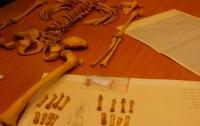 Странное место с останками ребёнка нашли в Польше
