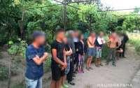 13 человек освободили из трудового рабства: Люди по 15 часов ежедневно работали на полях фермеров