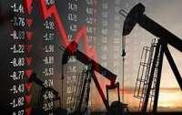 В России с позитивом смотрят на понижении нефти в цене