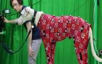 Британские ученые разработали программное обеспечение, позволяющее оцифровать животное