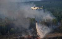 В Чернобыльской зоне горит трава