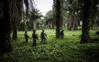 В Конго убили семерых миротворцев ООН