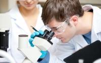 Разработан препарат для лечения опухоли головного мозга