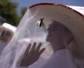 В Мексике зафиксировали первый случай заражения вирусом Зика