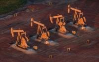Цена на нефть продолжает стремительно расти