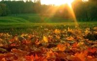 Украинцам на выходные обещают теплую погоду