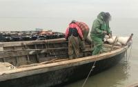 На Одесщине задержали браконьеров, наловивших 4 тонны карпов