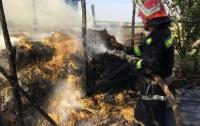 В Кировоградской области во время пожара нашли тело ребенка