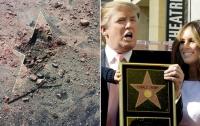 СМИ: звезду Трампа охраняли