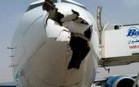 Стая птиц разнесла нос самолета: пилоты спаслись чудом