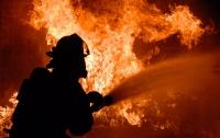 Крупный пожар в Запорожской области: погиб человек