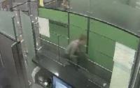 В аэропорту Киева мужчина пытался проползти на корточках мимо пограничников