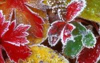 Украину снова будет терзать холод: синоптики предупредили о заморозках