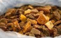 На Ровненщине обнаружили более 200 кг незаконно добытого янтаря