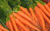 Назван самый полезный овощ, который нужно есть каждый день