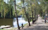 Дно прудов в парке «Нивки» никто никогда не убирал (ДОКУМЕНТ)