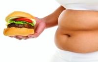 Нашли связь между образованием и ожирением