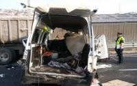 Жуткое ДТП в Мексике: погибли 13 человек, восемь пострадали
