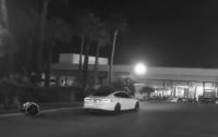 Российский робот погиб под колесами американской Tesla (видео)