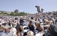 Пеликаны чуть не сорвали выпускной в университете в США