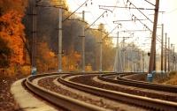 Под колесами поезда в Винницкой области погибла женщина