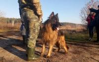 Переплыл реку и дошел до Киева: найден пропавший без вести подросток