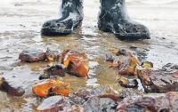 Копатели янтаря повредили заповедник международного значения на Ривненщине
