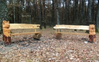 Вандалы отметили новый год, ломая детские качели и воруя сказочных медведей