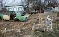 В Украине сравнили состояние сел с разрухой после войны