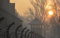 Венгерские туристы попытались украсть кирпичи из Освенцима