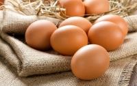 Медики рассказали, как правильно есть яйца