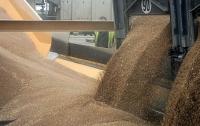 В Винницкой области под завалами зерна погиб мужчина