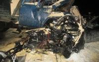 Жуткое ДТП под Киевом: погибли четыре человека
