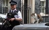 Необычная кража в Великобритании: преступники удивили поступком