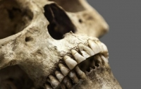Ученые нашли смертельный вирус в останках древнего человека