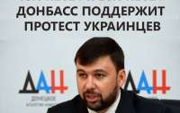 Кремлевские кукловоды готовы поддержать протесты украинцев