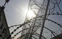 Под Житомиром заключенные сбежали из колонии