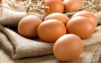 Массовое заражение яиц токсинами: Еврокомиссия созовет кризисное совещание, - СМИ